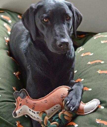 Sophie Allport Gioco per Cani - Volpe itzi hub il luogo sicuro per i tuoi regali