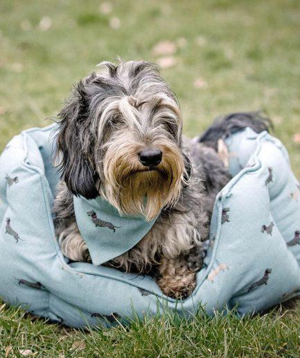 Sophie Allport cuccia cane M bassotto: ITZI HUB il luogo sicuro per i tuoi regali